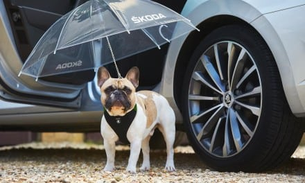 Skoda Dog Brolly