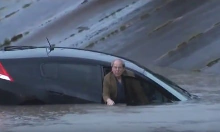 Honda Insight drives into flood on Live TV