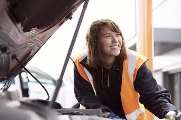 Halfords Free Winter Checks